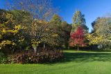 Harlow Carr Yorkshire