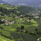 Merano Orchards
