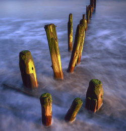 Sandsend Groynes Winter Sunrise
