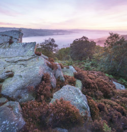 Crocodile Rock and misty Nidderdale