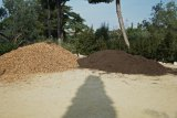 Earth & wood Chippings Spain