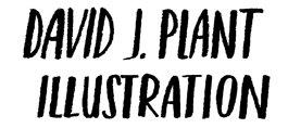DAVID  J  PLANT  ILLUSTRATION