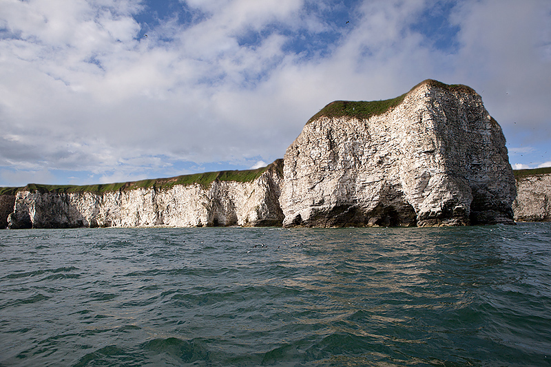 Flamborough/Bempton Cliffs