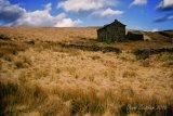 MOORLAND HOUSE