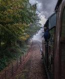 Climbing between Kelling Heath Park Halt  and Holt behind GWR tank locomotive 5619, North Norfolk Railway, 23 October 2012