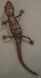 Small Wall Lizard