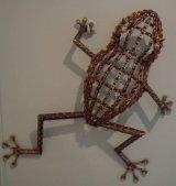 Wall Frog