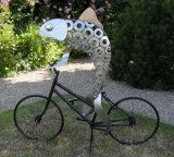 Fish on a Bicycle 2