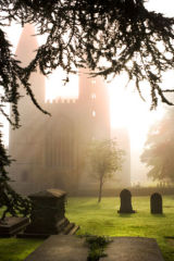 Misty Minster morning