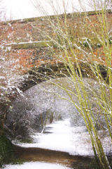 Snowy scene on the Southwell trail