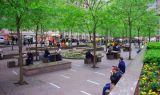 NYC-park