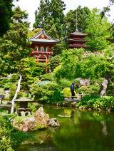 japanese-garden,-san-francisco