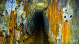 Subterranean Wonderland