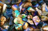 Opal Stream