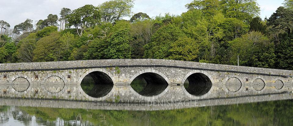 Belvelly Bridge, Cobh, Co. Cork,  May '15