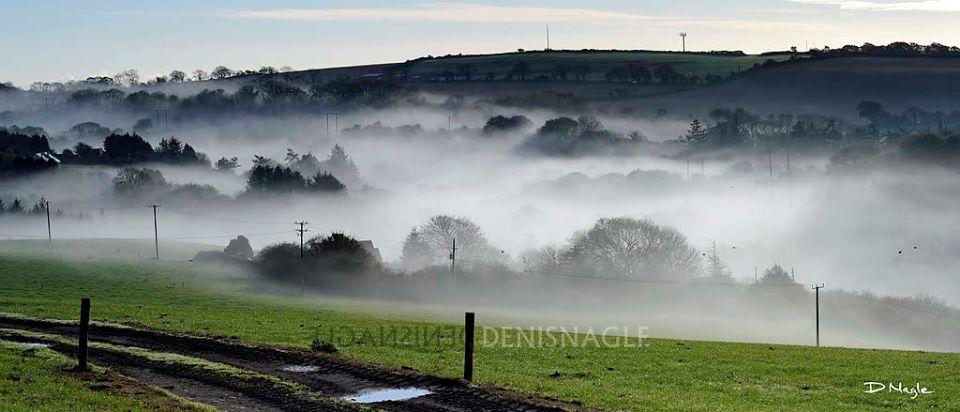Owenabue Valley , Ballea , Carrigaline , Co. Cork , Nov ' 13