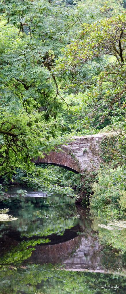 Ballea Bridge , Carrigaline , Co. Cork , July ' 13 .