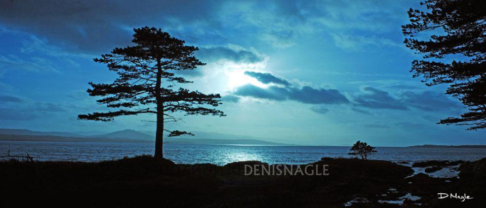 Kenmare Bay , Co. Kerry , Dec ' 07 .