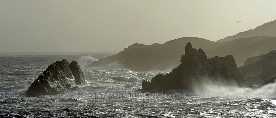 Sherkin Island, West Cork, Oct '14