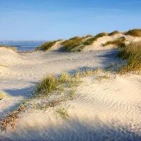 East Head Dunes