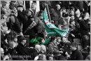 London Irish St Patrick's Day match 2017 - Wokingham paper