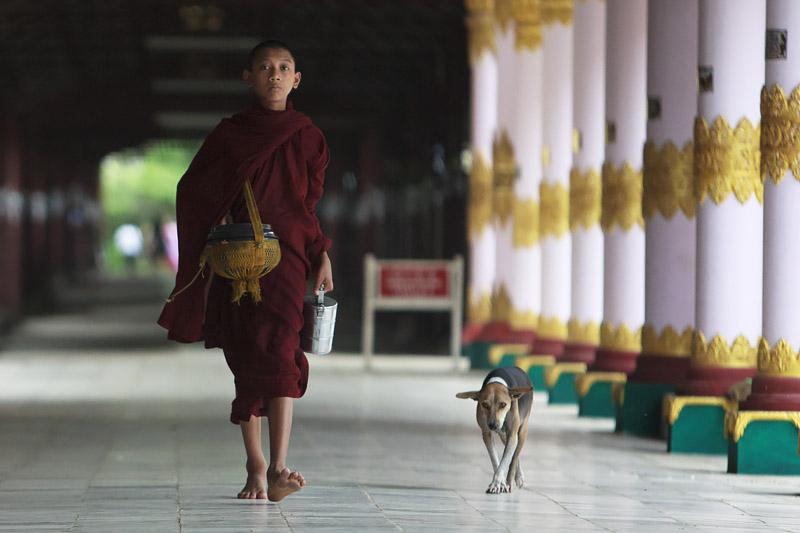 Monk IMG 7264 E2