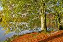 Stourhead Colours