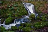 Alva Glen Waterfall- A Photography favourite in Clackmannanshire