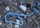 Beach still-life