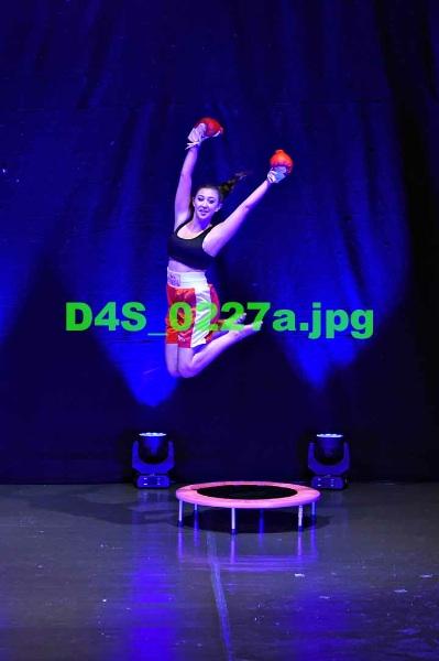 D4S 0227a