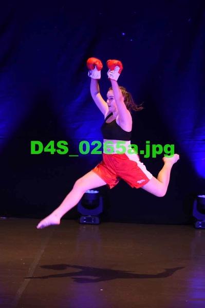 D4S 0265a