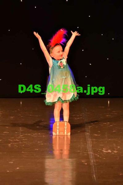 D4S 0458a