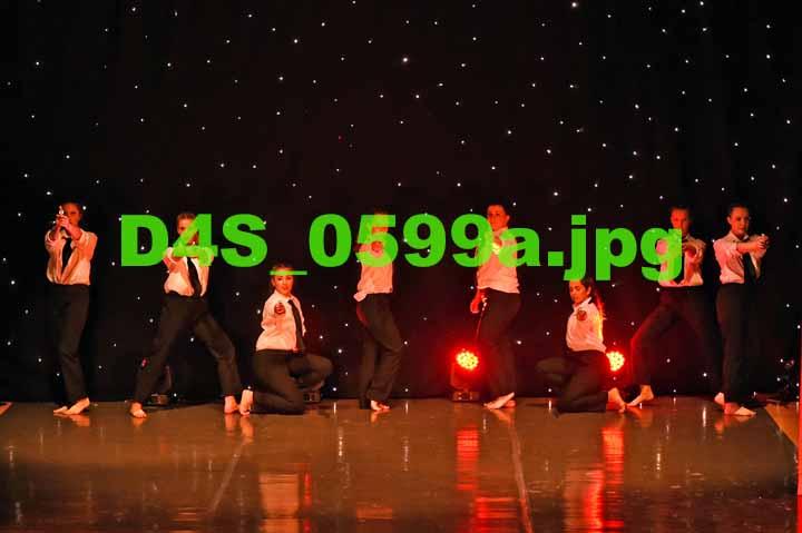 D4S 0599a