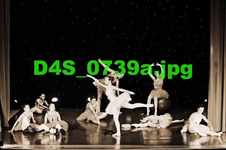 D4S 0739a