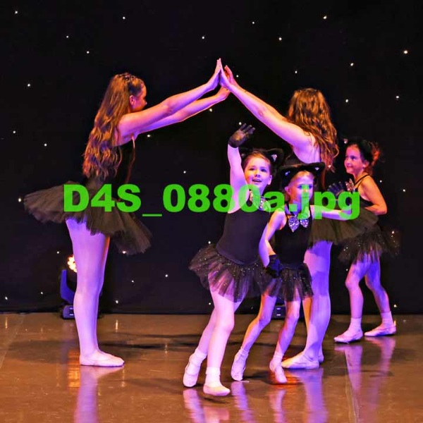 D4S 0880a