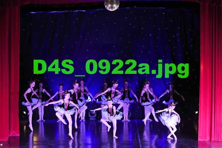 D4S 0922a