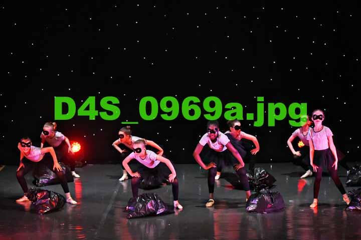 D4S 0969a