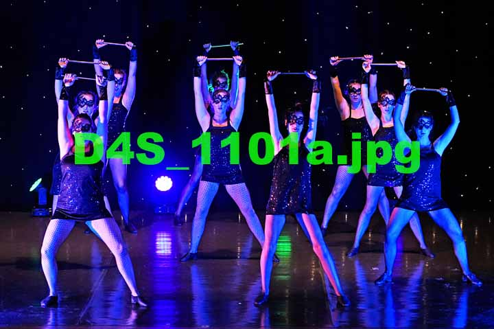 D4S 1101a