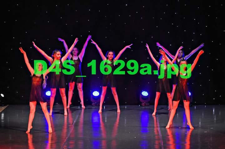 D4S 1629a