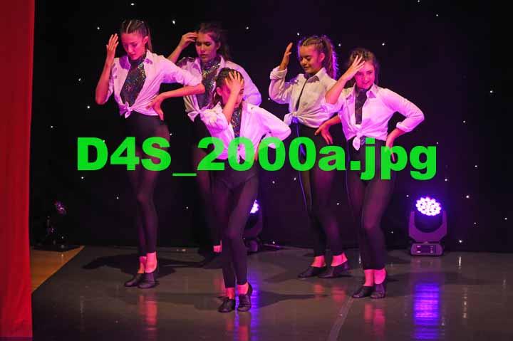 D4S 2000a