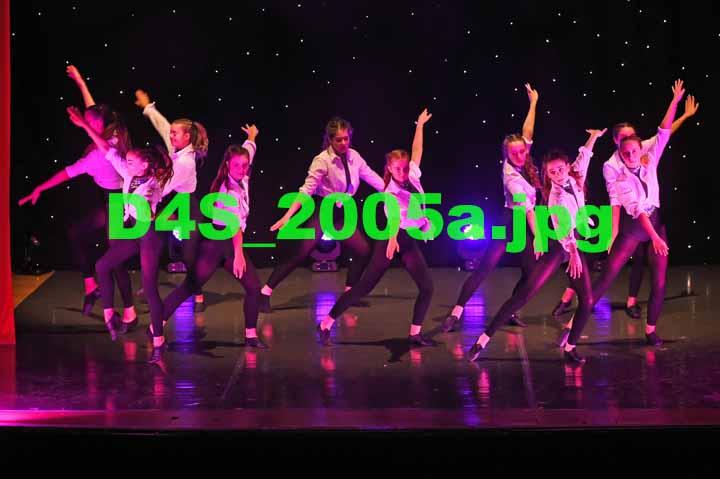 D4S 2005a