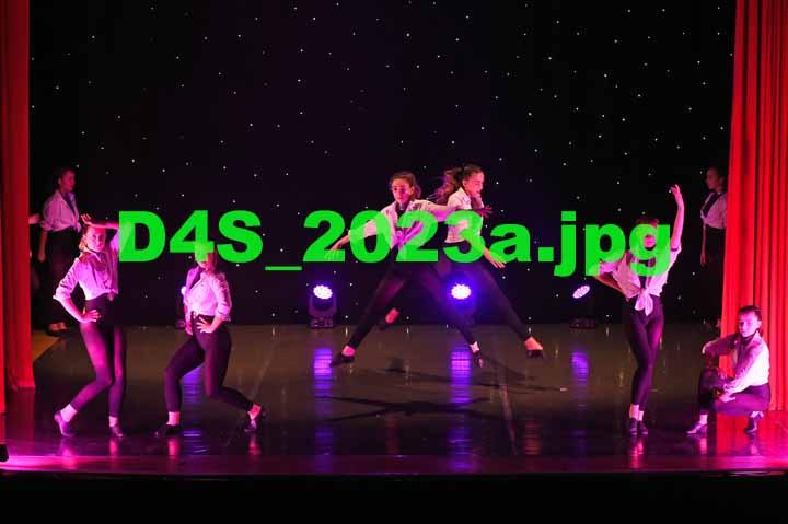 D4S 2023a