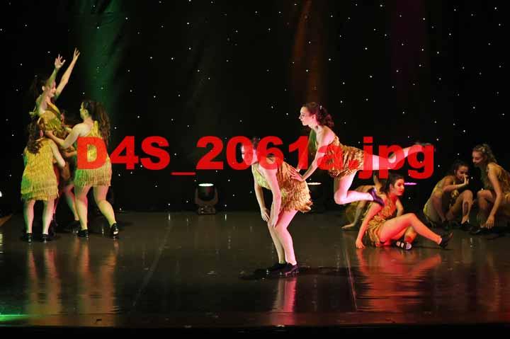 D4S 2061a