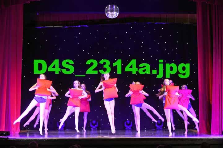 D4S 2314a