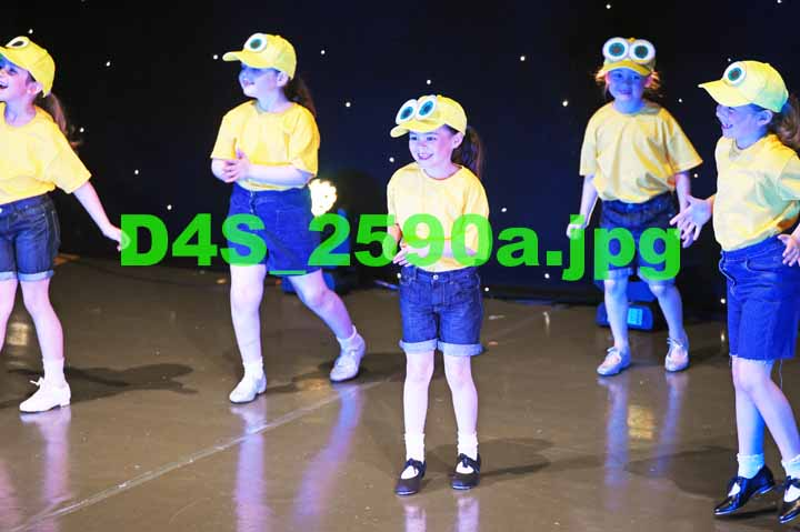 D4S 2590a