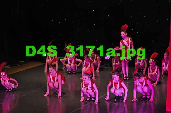 D4S 3171a