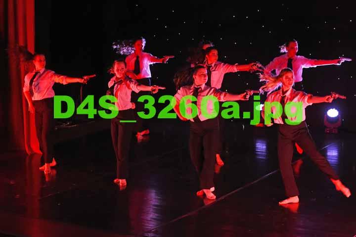 D4S 3260a