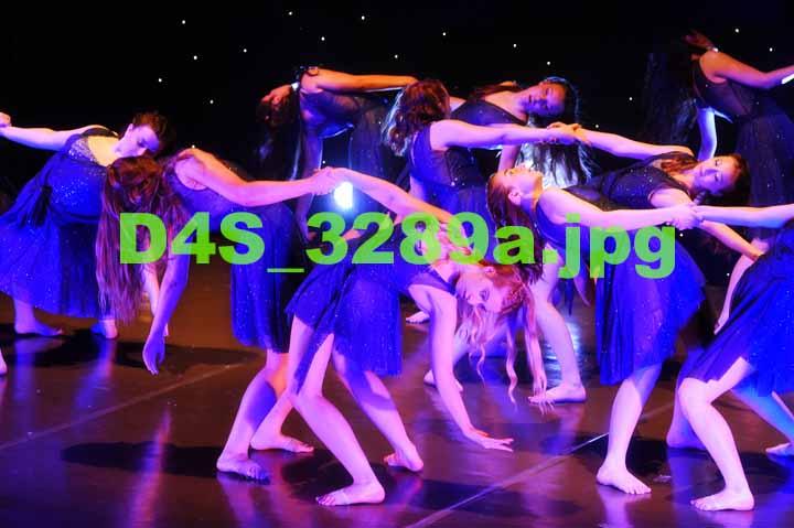 D4S 3289a
