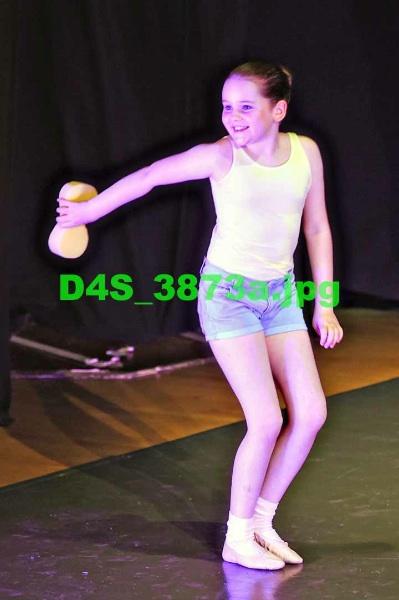 D4S 3873a