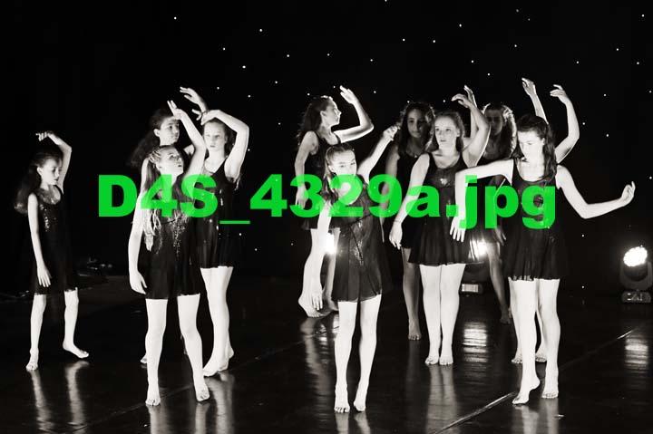 D4S 4329a